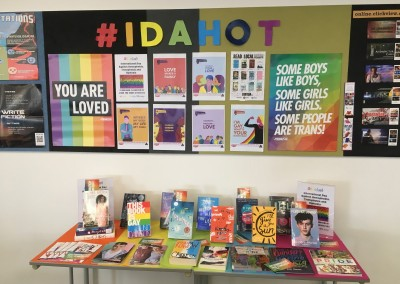IDAHOT display
