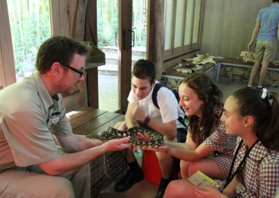 Year 7 Zoo Excursion