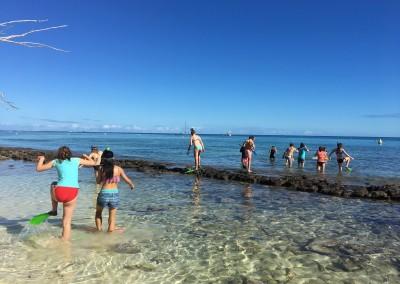 New Caledonia Study Trip
